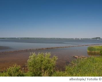 Dümmer See Wasserqualität