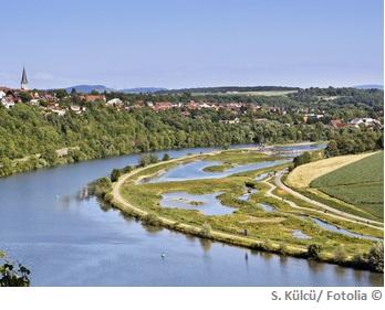 Neckar Wasserqualität