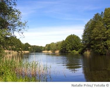 Havel Wasserqualitaet