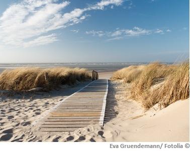 Nordsee Wasserqualitaet