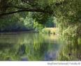 Wasserqualität der Altmühl