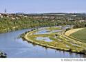 Wasserqualität des Neckar