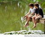 Teich Wasserqualität